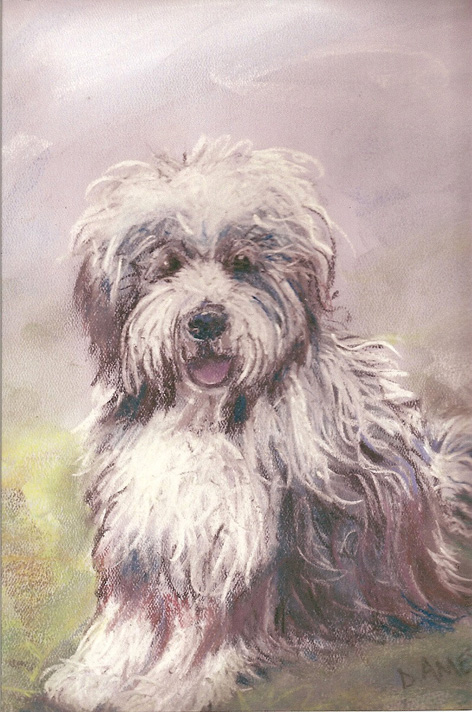 Chalk pastel study of cute dog for owner.