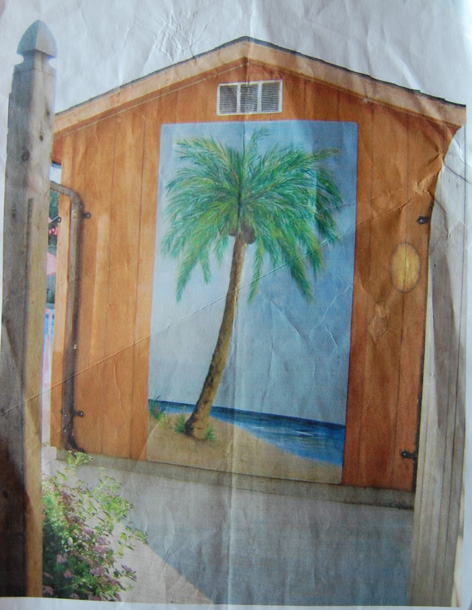 Mural artwork on the side of a shed by a backyard pool.